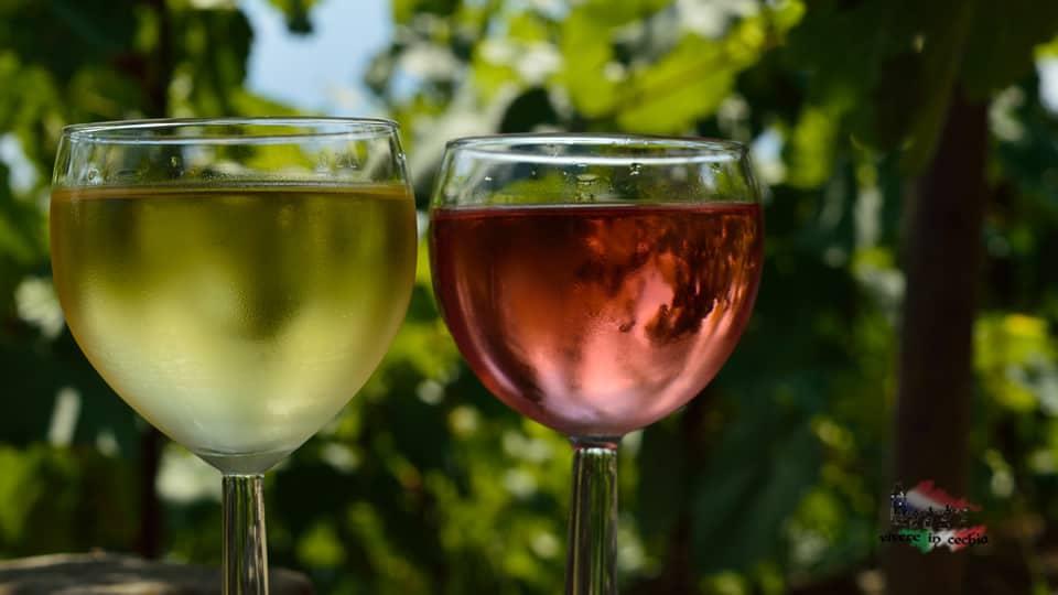 praga-vino-vinoteche