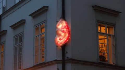 embryo-stare-mesto-praga